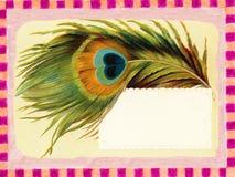羽毛框架海报葡萄酒 图库摄影