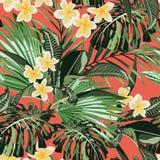 羽毛热带异乎寻常的花无缝的样式 与棕榈妖怪叶子的现实花卉例证 库存例证
