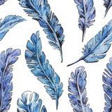 羽毛的样式 免版税图库摄影