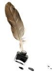 羽毛笔套抽象颜色 免版税库存图片
