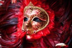 羽毛红色&黑面具3 库存照片
