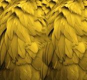 羽毛黄色 免版税库存图片