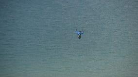 滑翔伞上涨在海 股票录像