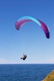滑翔伞在悉尼 免版税库存照片