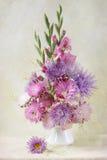 翠菊和剑兰花束 库存图片