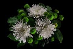 翠菊和菊花花束  图库摄影