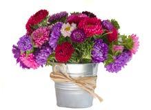 翠菊花花束在花瓶的 免版税库存照片