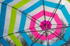 翠菊许多秋天的紫红色心情粉红色 下落的叶子和雨珠在一把透明伞 底视图 镶边透明被打开的伞 免版税图库摄影