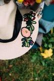 翠菊许多秋天的紫红色心情粉红色 库存图片