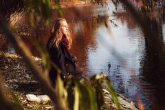 翠菊许多秋天的紫红色心情粉红色 放松与书的年轻美丽的妇女在秋天的公园 免版税库存照片