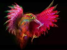 翠鸟鸟 摘要 库存图片
