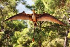 翼手龙在森林的恐龙飞行 免版税库存照片