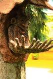 翼果,俄罗斯- 2016年8月04日 在树的妖怪与 免版税图库摄影