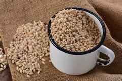 老上釉的杯子用大麦米 免版税库存照片
