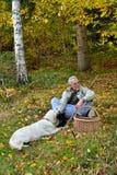 老人和狗采蘑菇 免版税库存图片