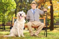 老人坐与他的狗的一条长凳在公园 免版税库存照片