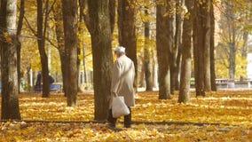 老人或退休人员有一个灰色胡子的和有袋子的在秋天走在一好日子 黄色枫叶在地面上说谎 股票视频