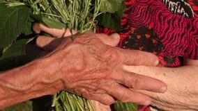 老人的起皱纹的手特写镜头有花的 影视素材