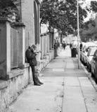 老人读书报纸在布拉索夫,斯洛伐克 黑色白色 库存图片