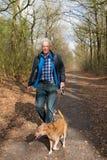 老人走的狗在森林里 免版税库存照片