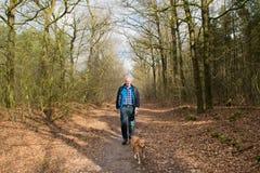 老人走的狗在森林里 库存图片