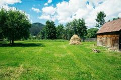 老传统干草堆积nea老木谷仓 库存图片