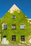 老传统德国房子coved与常春藤在日落,德国 库存照片