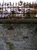 老公园,一个被放弃的豪宅,秋天,下跌的黄色离开 免版税库存照片