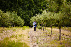 老农夫传播的肥料在果树园 免版税库存照片
