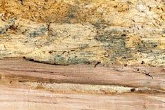 老分裂木头 免版税库存图片