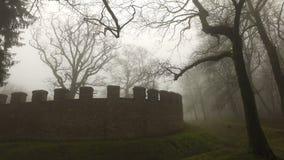 老历史古老城堡墙壁和森林在有薄雾的有雾的天 股票视频