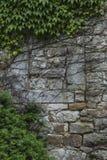 老历史的门和窗口在被放弃的城堡墙壁 库存照片