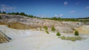 老反对遥远的森林的黏土猎物石倾斜 股票视频