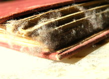 老古色古香的书 免版税库存图片