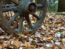 老古色古香的木轮子 免版税库存图片