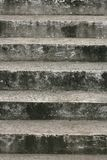 老台阶梯子 库存照片