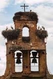 老吊钟山墙由鹳nestes侵略了在西班牙的村庄 库存照片