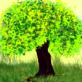 老和偏僻的树 库存图片