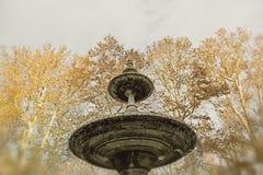 老喷泉的细节 图库摄影
