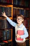老图书馆 免版税库存图片