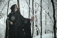 老圣人在黑暗的森林里 免版税库存图片