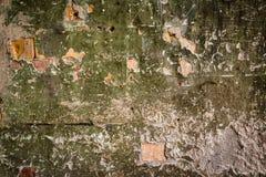 老在工厂厂房的油漆生苔砖墙 免版税库存照片
