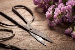 老在木桌上的葡萄酒钢剪刀与花 库存图片
