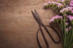 老在木桌上的葡萄酒钢剪刀与花 库存照片