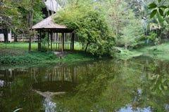 老在池塘附近的柚木树木亭子 图库摄影