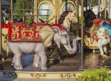 老在金黄晚上光的转盘五颜六色的大象 库存照片