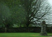 老坟园和两棵树 库存图片
