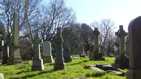 老坟园 库存照片