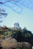 老城堡在日本 库存照片