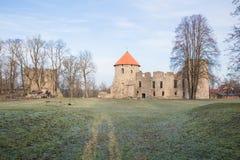 老城堡在Cesis,拉脱维亚 编译有历史 免版税库存图片